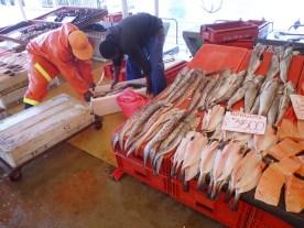 Lachs aus Aquakulturen!