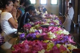 srilanka_tempel_gebet