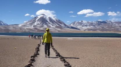 Chile-SanPedroAtacama-Lagunas-Wolf