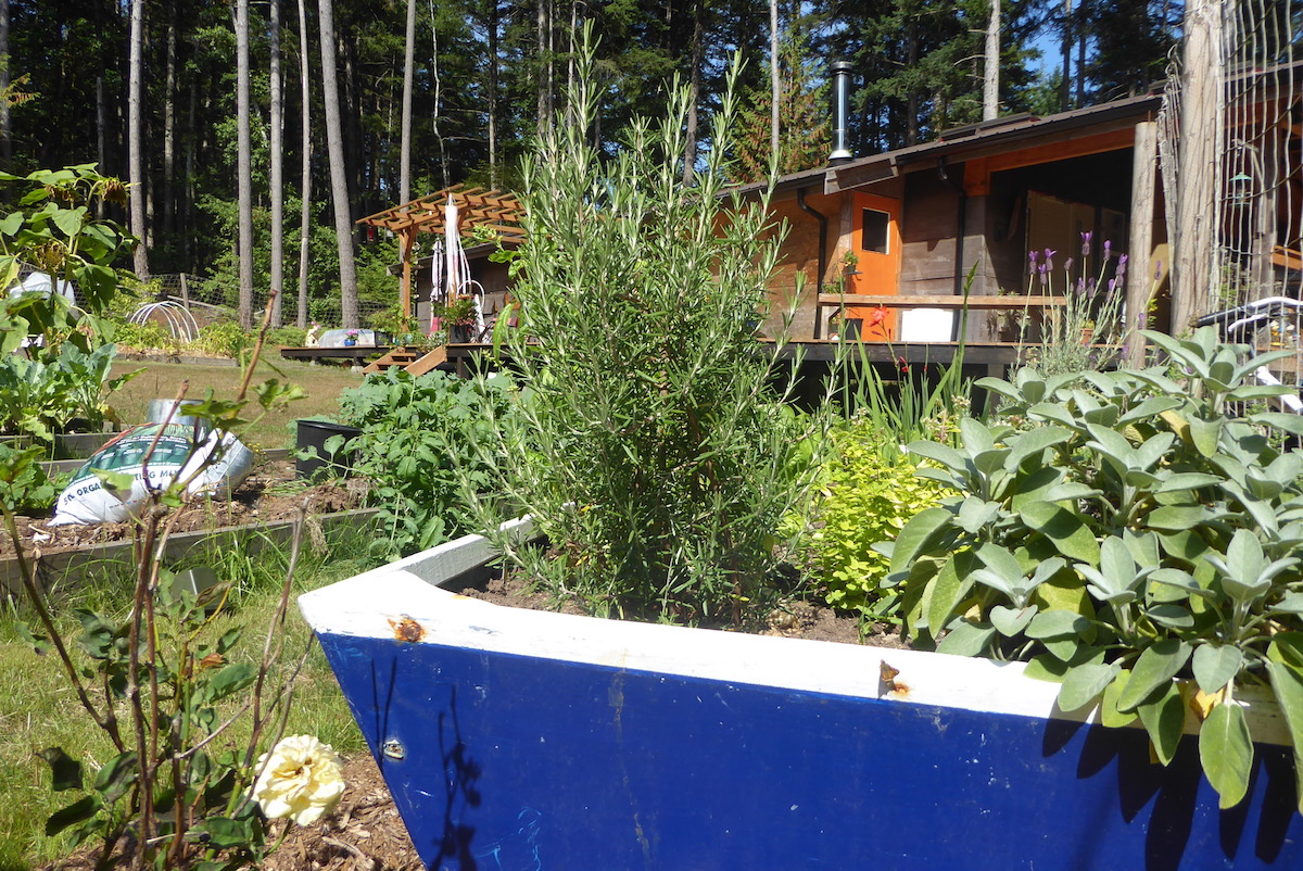 19 Monate auf Weltreise: Haus mit Garten auf Hornby Island