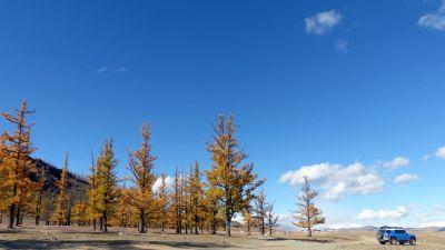 weltreise-zentral-mongolei-0302