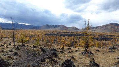 weltreise-zentral-mongolei-0314