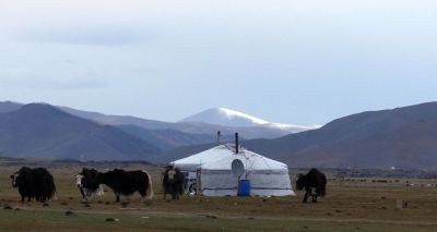 weltreise-zentral-mongolei-0421