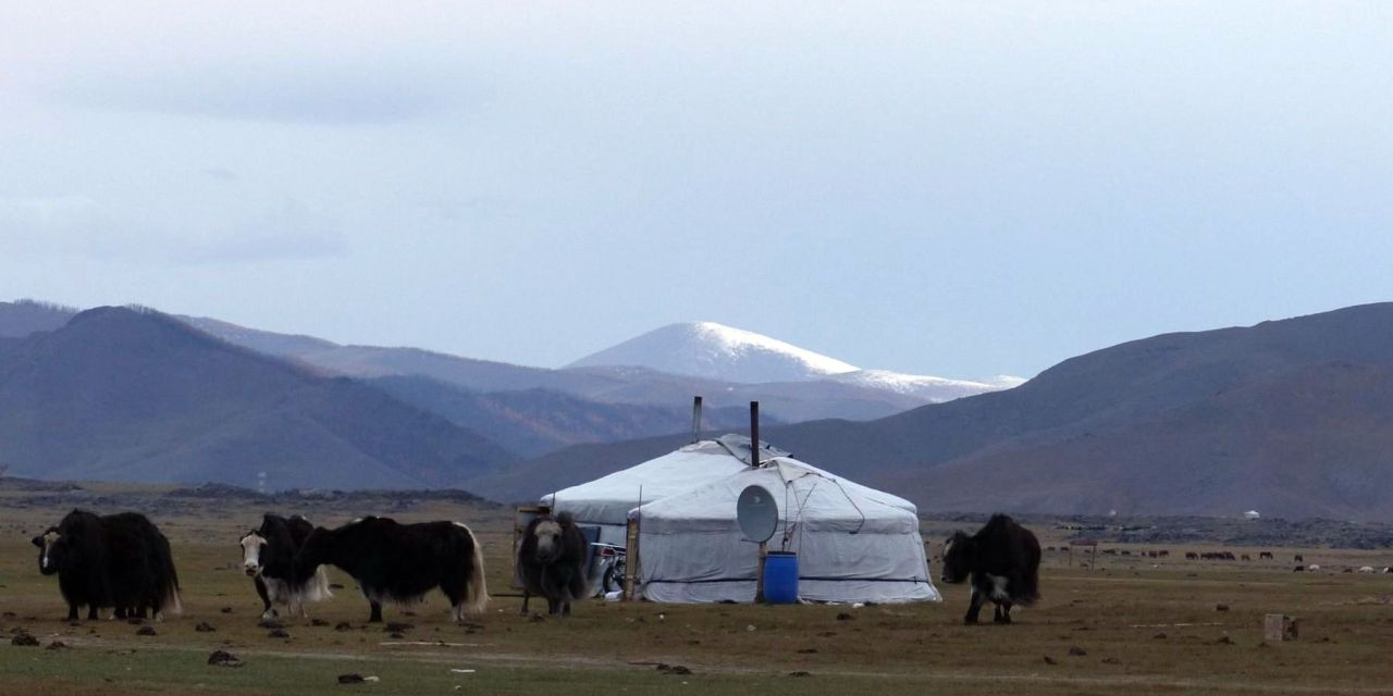 Neue Bilder aus der zentral Mongolei (Tour 2) online