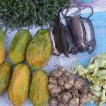 Video aus Laos – Luang Prabang – Besuch eines Marktes um 6:00 Uhr morgens :-)