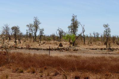 weltreise nocker australien - GIBB_595