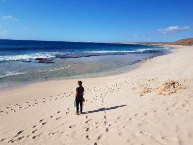 weltreise nocker australien - Gnaraloo Bay - Carnarvon_64
