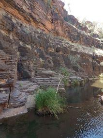 weltreise nocker australien - Karrijini National Park_215