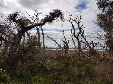 weltreise nocker australien - Region Margaret River_26