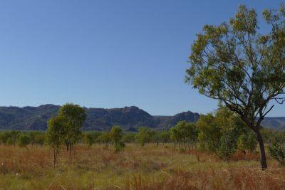 weltreise nocker australien - purnululu national park_518