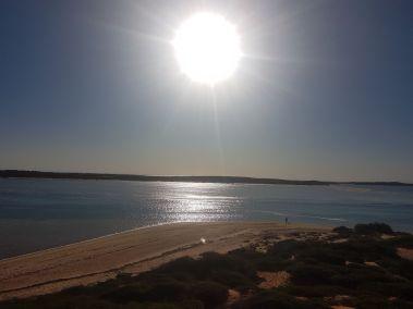 weltreise nocker australien - shark bay_154