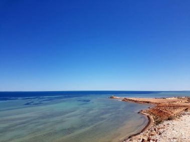 weltreise nocker australien - shark bay_206