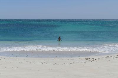 weltreise nocker australien - shark bay_221