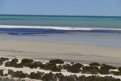 weltreise nocker australien - shark bay_244
