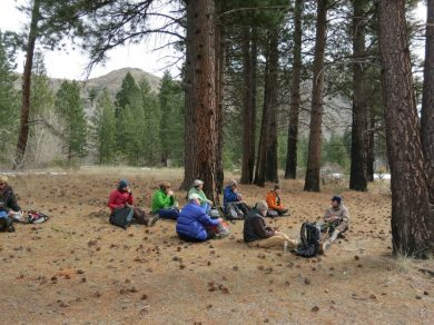 Lunch in a grove of ponderosa pines, with a carpet of cones strewn on the needle-covered ground. Despite the passing of 18 years, blacken trunks remind us that they survived the 1994 wildfire that swept across this valley. Thick corky bark insulated the inner living tissues from harm from killing heat of the flames.
