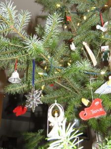 Our Christmas tree is a Douglas-fir, thinned out of a dense grove.