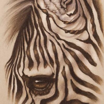 Zebra Eye Pastel    more info