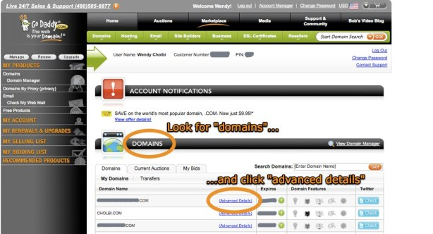 """""""My Account"""" screen, shown when you first log into GoDaddy.com"""