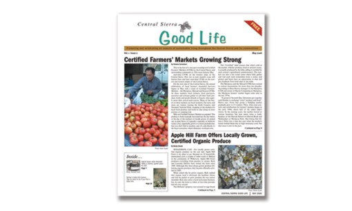 Good Life Newspaper Tabloid