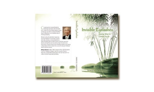 Self-Help Book Cover – Invisible Eyelashes
