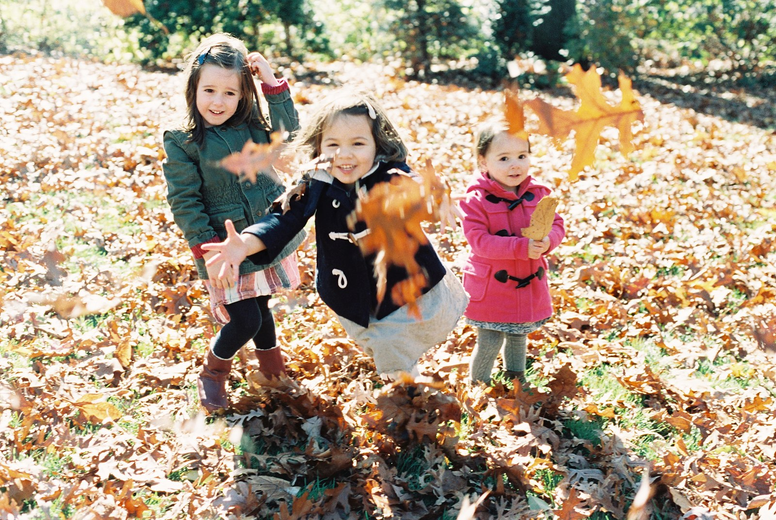 portraits of sisters by wendy g photography