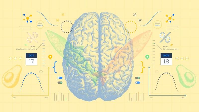 Kognitionsvetenskap