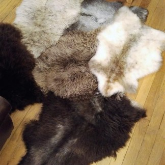 Rare Breed Sheepskin Rugs