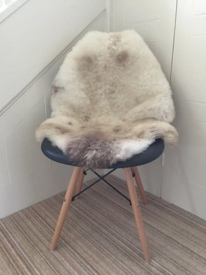 rare breed standard cappucino sheepskin