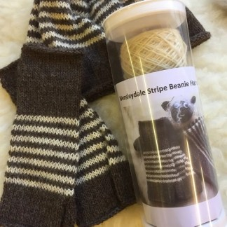 Striped Beanie Hat and Gloves Kit 1