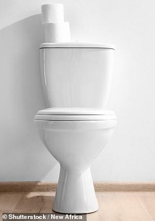 特朗普抱怨水压太低,上完厕所要冲十几次(图)