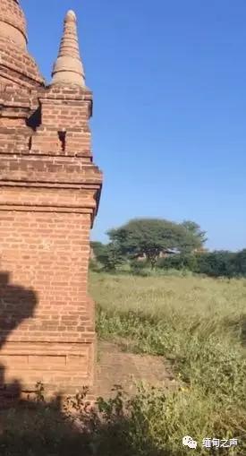 外國情侶在緬甸蒲甘佛塔內拍攝淫穢視頻、照片!必須嚴懲