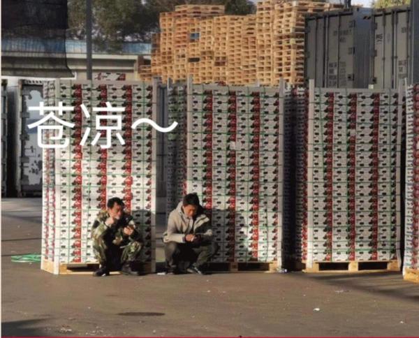 """从王子沦为贫儿 33万吨智利车厘子在华""""滑铁卢"""""""