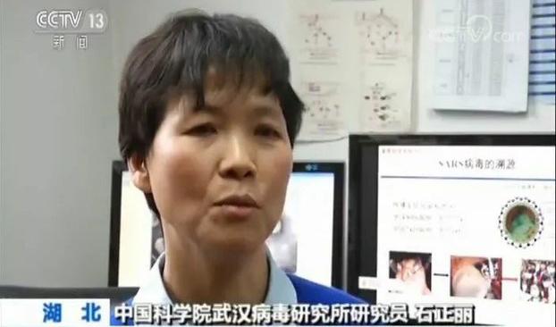 美媒揭:美官员被警告不要调查病毒起源 否则会…