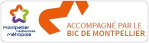 Bic de Montpellier accompagne WePub