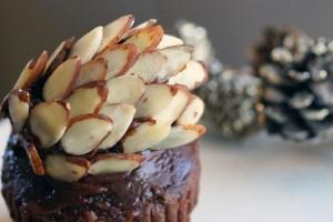 almond-pinecone-cupcake