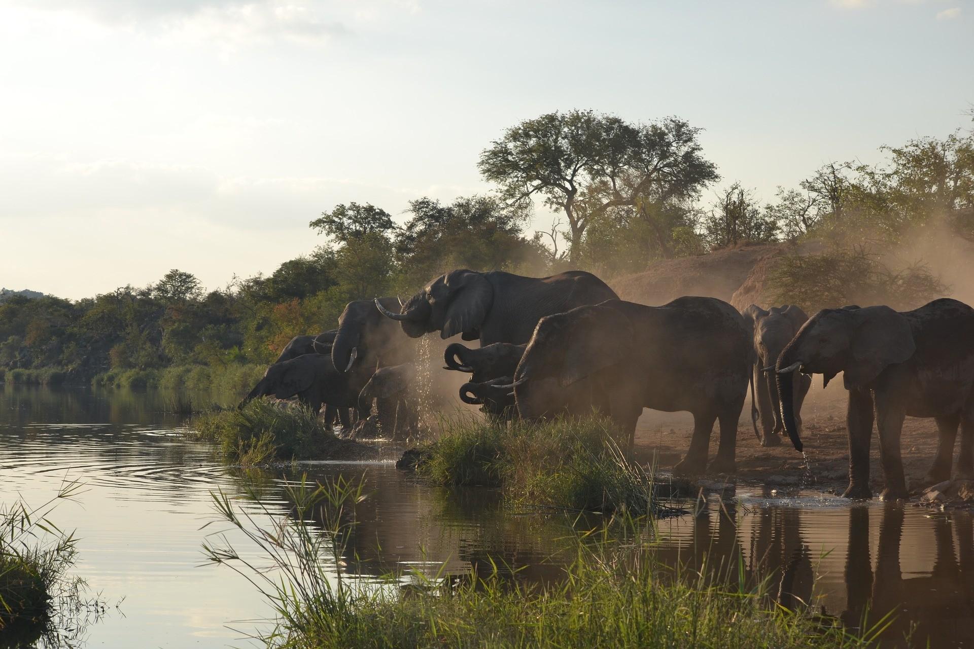 24 Must Sees in Afrika   De mooiste plekken voor je bucketlist ✔ via @wereldreizigersnl