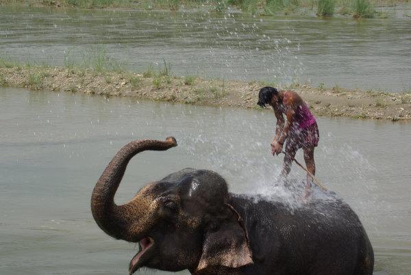 nepal240