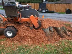 monroe-wa-stump-removal-stump-grinding-14