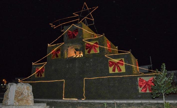 L'accensione dell'albero di Natale a Shama