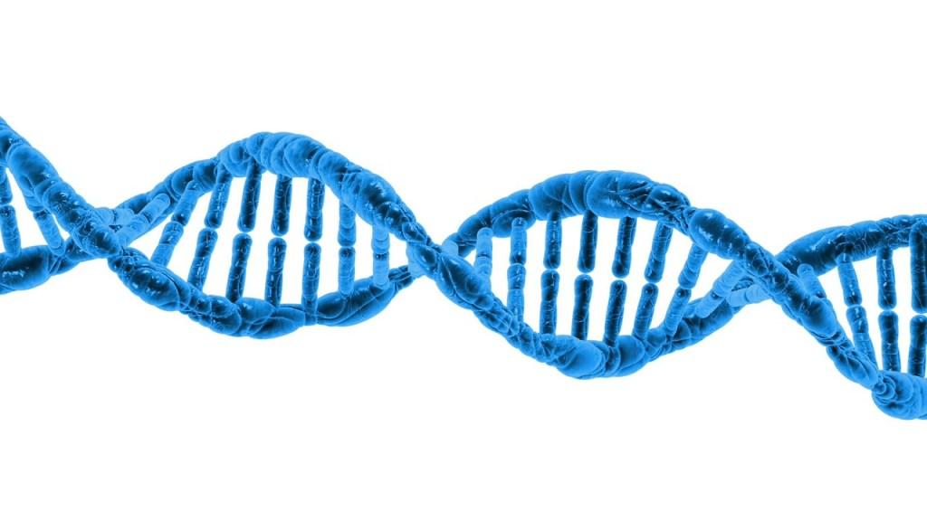 mutazioni genetiche tumori