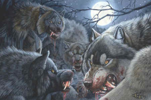 werewolves_packs