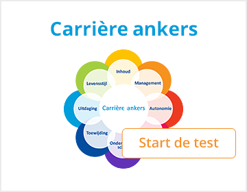 Productafbeelding Selfassessment Carrière ankers