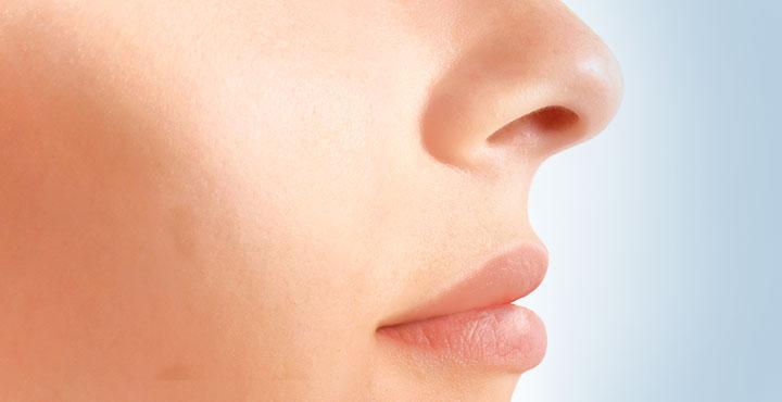 Nase und Mund