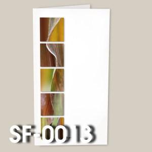 SF-0013