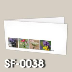 SF-0038