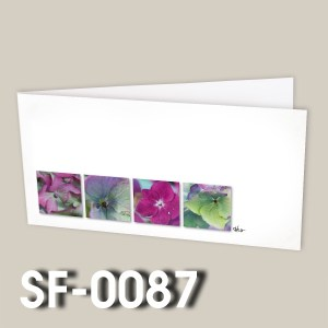 SF-0087