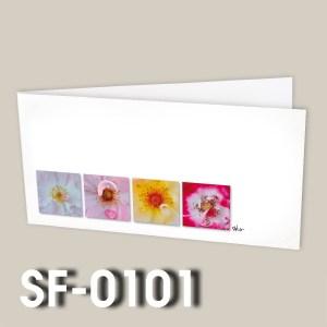 SF-0101