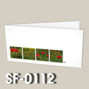 SF-0112