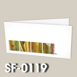 SF-0119