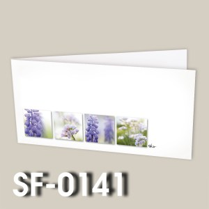 SF-0141
